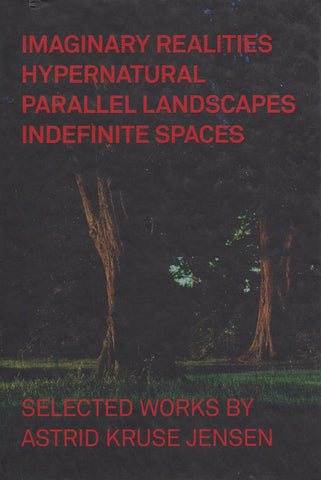 IMAGINARY REALITIES HYPERNATURAL PARALLEL LANDSCAPES INDEFINITE SPACES - ASTRID KRUSE JENSEN