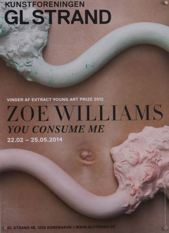ZOE WILLIAMS - YOU CONSUME ME