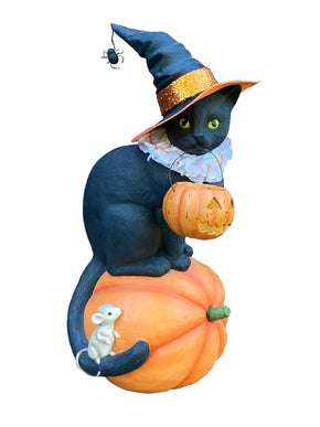 Onyx Cat Witch on Pumpkin