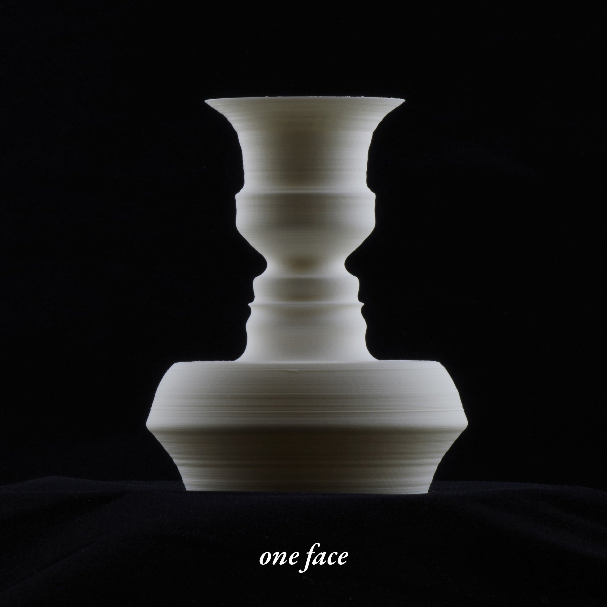 Fahz its your face in a vase custom 3d printed vase in white pla plastic 5 inch reviewsmspy