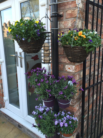 Mixed 10 Pk of 4 Hanging Basket brackets and 6 Plant Pot brackets - for drainpipes. £17.99