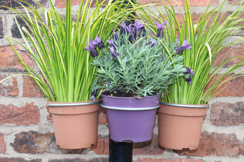 Plant Pot bracket - 3Pk - for drainpipes. £9.99