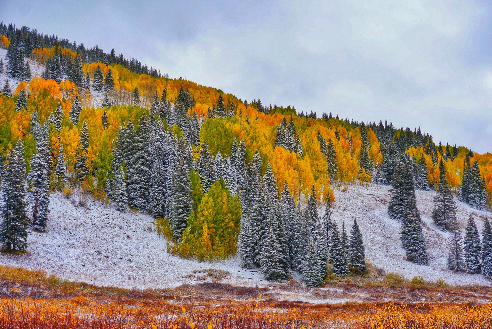 A Week of Fall Foolin' in Crested Butte