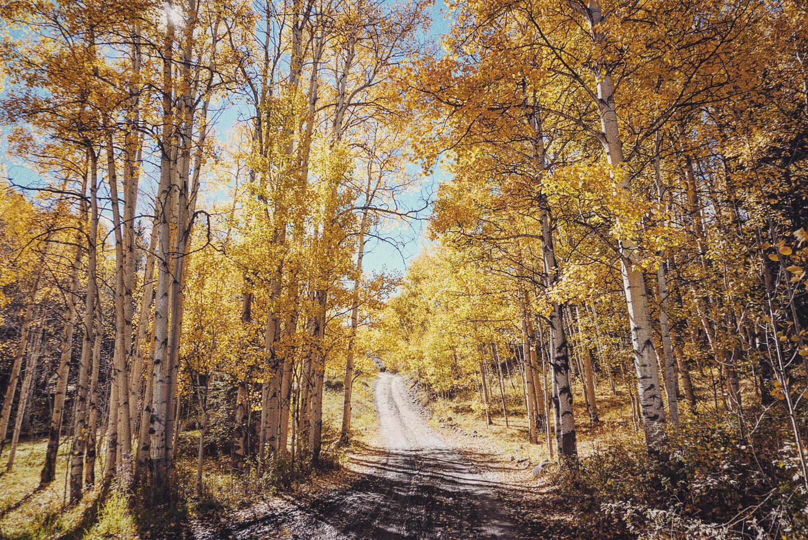 8 Epic Crested Butte Fall Instagrams