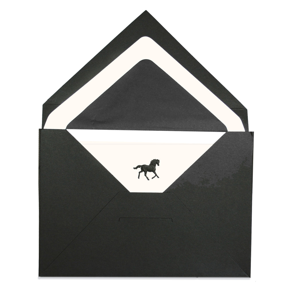 BOXED NOTE CARDS -OCM- BLACK HORSE