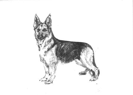 BOXED NOTE CARDS - ODB - GERMAN SHEPHERD
