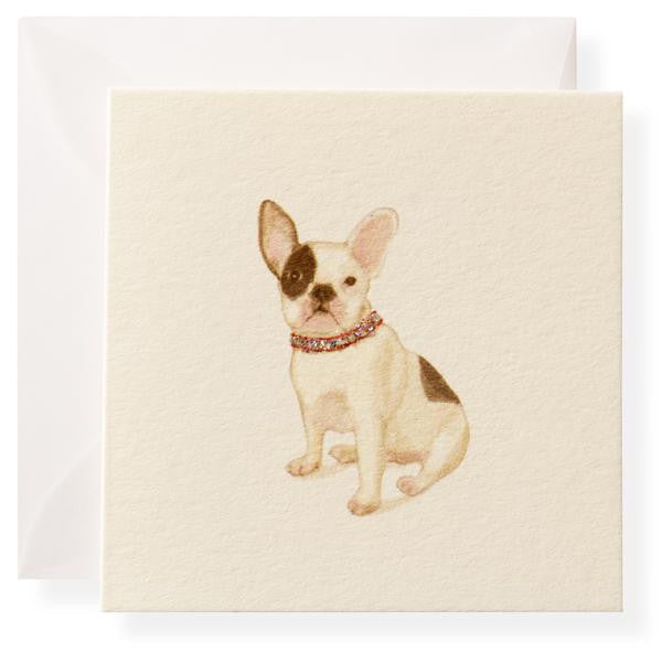 PIERRE FRENCH BULLDOG - GIFT ENCLOSURE