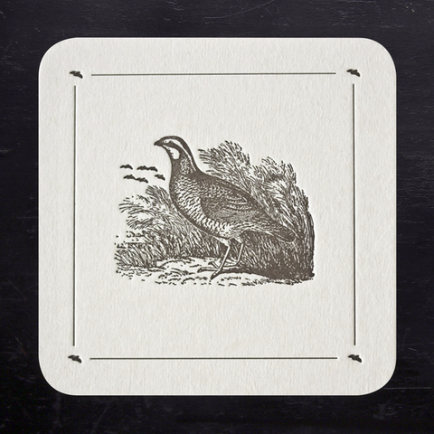 COASTERS - ANC - QUAIL SET OF 8 LETTERPRESS