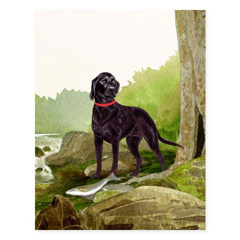 GENERAL DOG - FD - DOG BY THE STREAM BLACK LAB