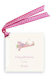 GIFT TAG SET - LB - BIRTHDAY PLANE  BLUE OR PINK