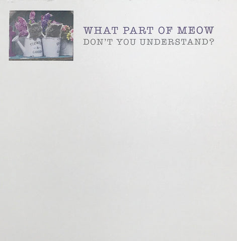 NOTEPAD - BFS - UNDERSTAND MEOW?