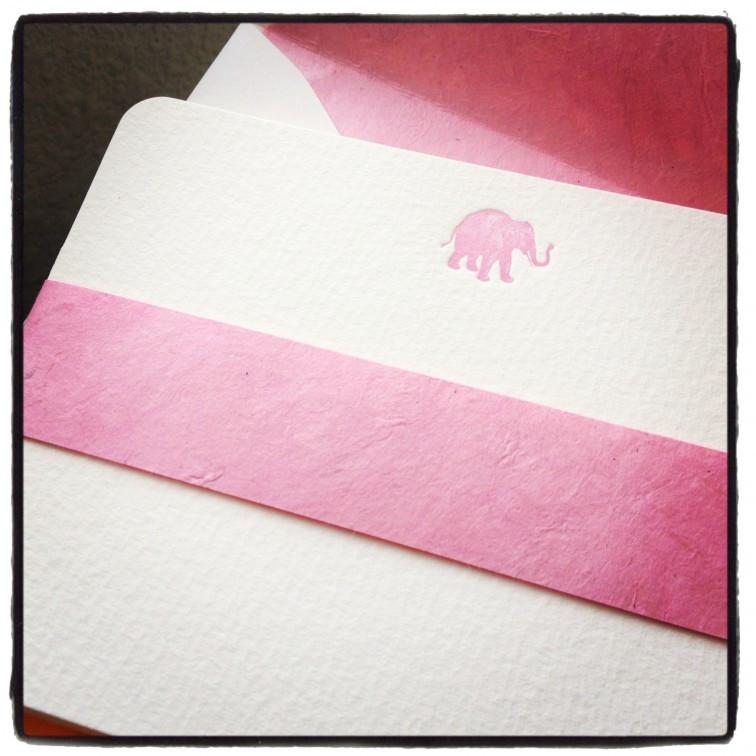 BOXED NOTE CARDS - BIO - PINK ELEPHANT LETTERPRESS
