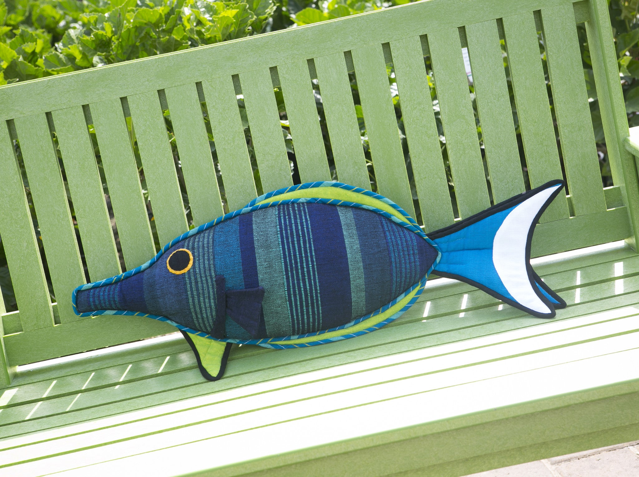 Fin, the Bird Wrasse Fish – Bursting with personality! (large size)