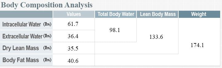 inbody body composition analysis