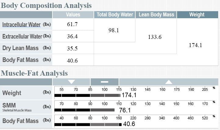 inbody muscle fat analysis