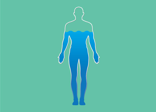 Your Body and You: A Guide to Body Water