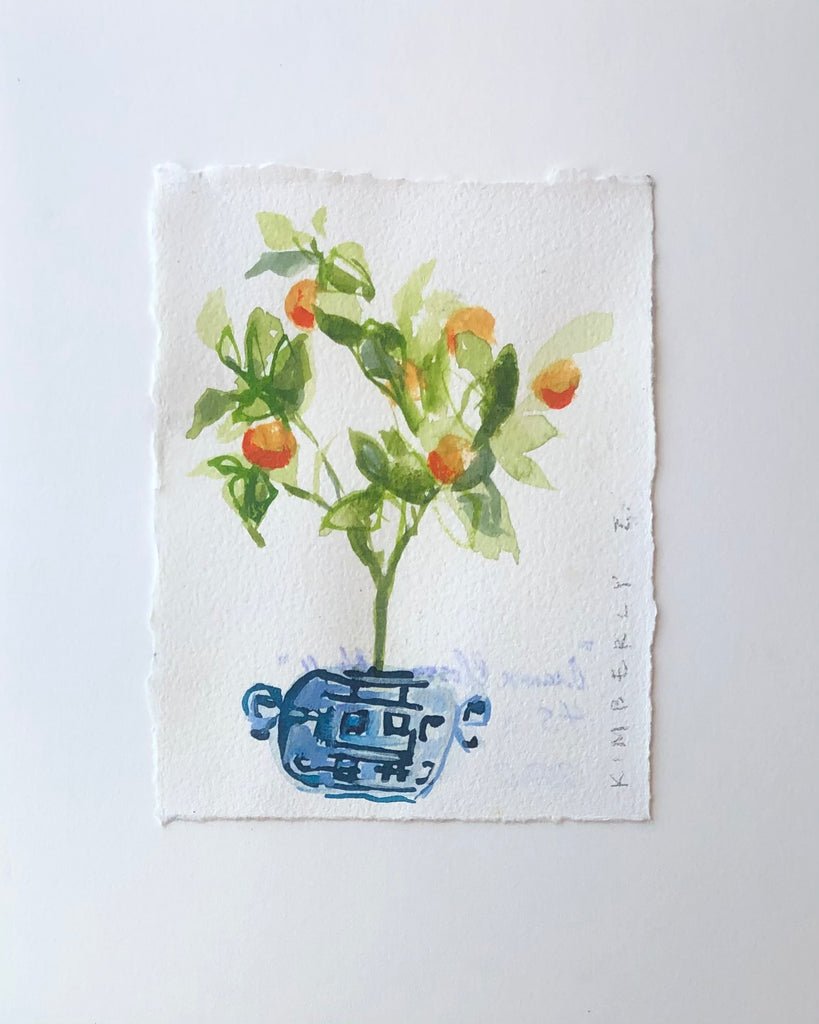 Orange Blossom No. 2 // 4.5x6