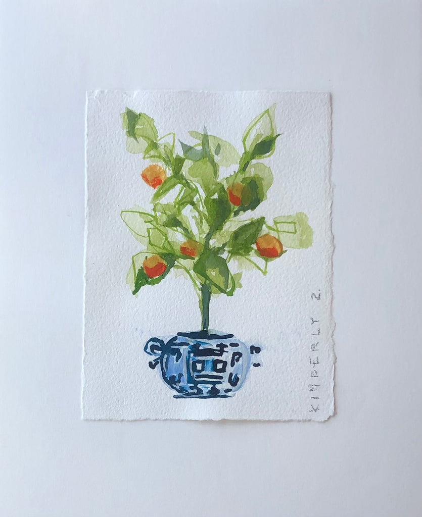 Orange Blossom No. 1 // 4.5x6