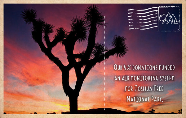 Air monitoring system for Joshua Tree National Park