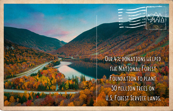 National Forest Foundation 50 Million For Our Forests
