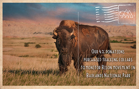 Badlands National Park Bison Collar Donation