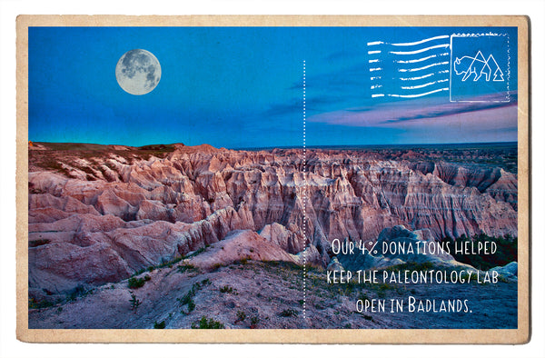 Enriching Fossils in the Badlands