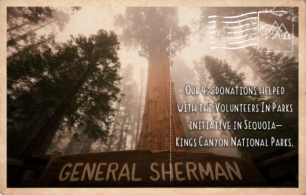 Volunteers In Parks initiative in Sequoia/Kings Canyon National Parks