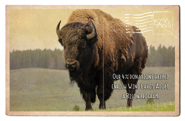 Wind Cave's Adopt a Bison Program
