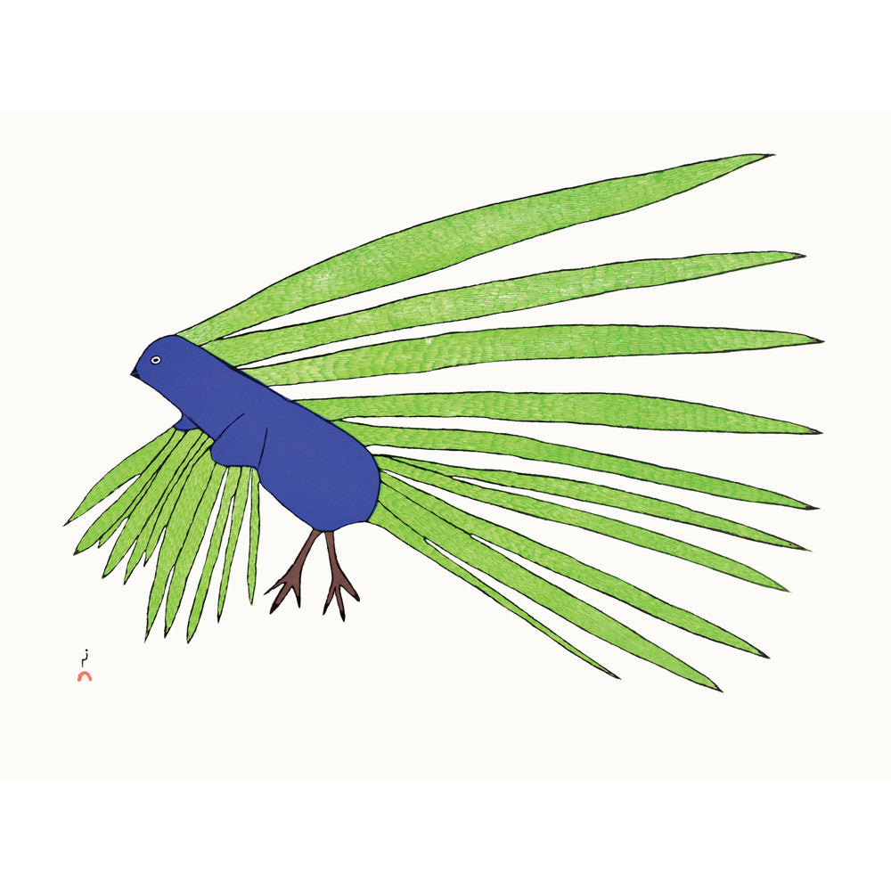 Green Feathers, Kakulu Saggiaktok, Cape Dorset, Inuit art, Art inuit, Eskimo art, gravures inuit, inuit print, eskimo print, 2016, print, collection