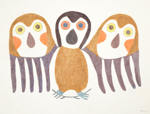 Owl, drawing by Meelia Kelly