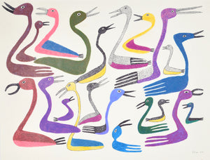 Loons, drawing by Meelia Kelly