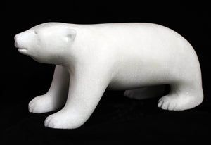 Polar Bear by Lyle Nasogaluak
