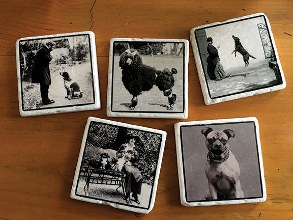 Vintage Dog Images on Tumbled Marble Tile Coasters by B. Berish