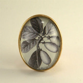 Olive You Classic Olive Botanical Flora Engraving Brooch