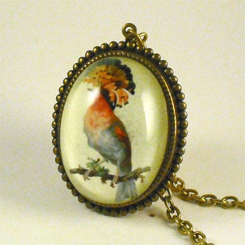 Polly Want A Cracker Exotic Bird Pendant Necklace