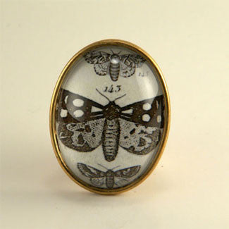 Speckled Wings and Flying Things Moth Vintage Engraving Brooch