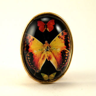 Aphrodite Butterfly Brooch