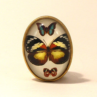 Psyche Butterfly With White Background Brooch