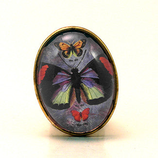 Zephyr Butterfly with Blue Background Brooch