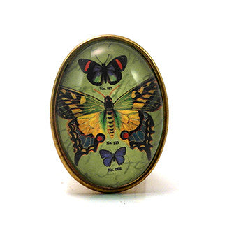 Gossamer Butterfly With green Background Brooch