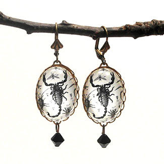 Scorpion Vintage Scientific Engraving Earrings
