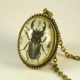 Beetle Juice - Vintage Scientific Beetle Insect Illustration Necklace
