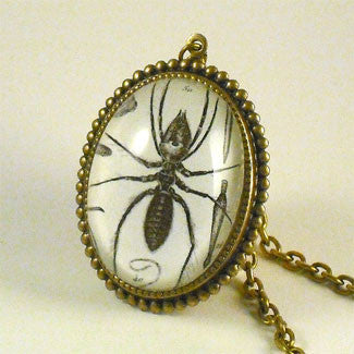 Insectavora Victorian Scientific Ant Engraving Necklace