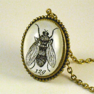 Flies in the Honey - Scientific Engraving of a Fly Pendant Necklace