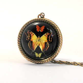 Aphrodite Butterfly Jewelry Petite Necklace