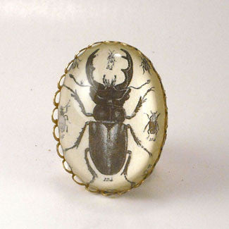 Beetle Juice - Vintage Scientific Beetle Insect Illustration Cocktail or Petite Ring