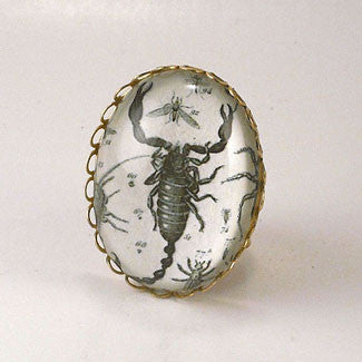 Scorpion Vintage Scientific Engraving Cocktail Ring