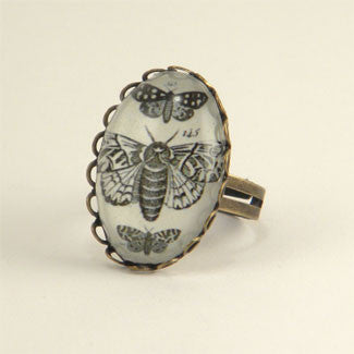 Moths, Moths, Moths Vintage Scientific Insect Illustration Petite Ring in Silver or Gold