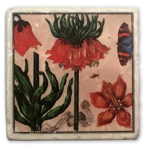 "Carnation Vintage Botanical Illustration on 4""x4"" Tumbled Marble Tile"