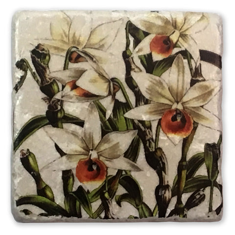 "Orchid Vintage Botanical Illustration on 4""x4"" Tumbled Marble Tile"